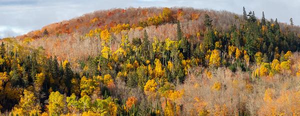 Lutsen Autumn