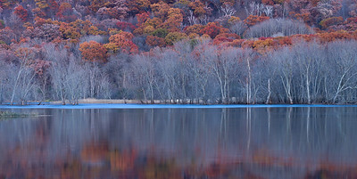 Red Oak Autumn Panoramic