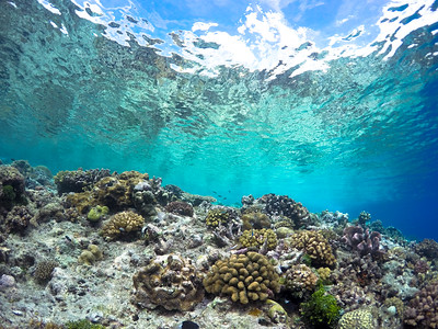 Kiriwina Island