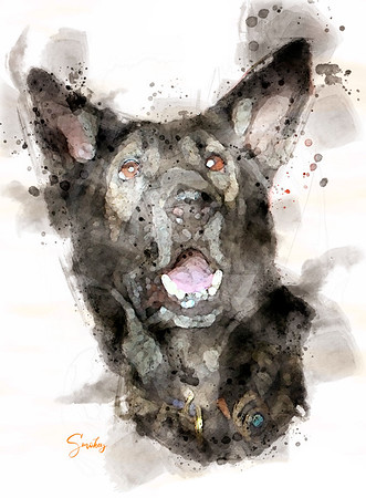 Smokey  K-9  watercolor