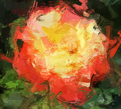 yellowpink rose_painterly