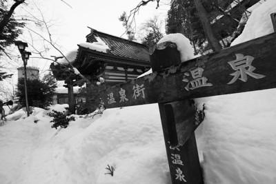Shiga-kogen / Yudanaka Nagano, Japan