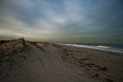 An overcast day at Henlopen State Park. Taken by Nate Doggart in Lewes, Deleware.