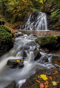 Fairy Glen in Autumn, Rosemarkie, Ross-shire
