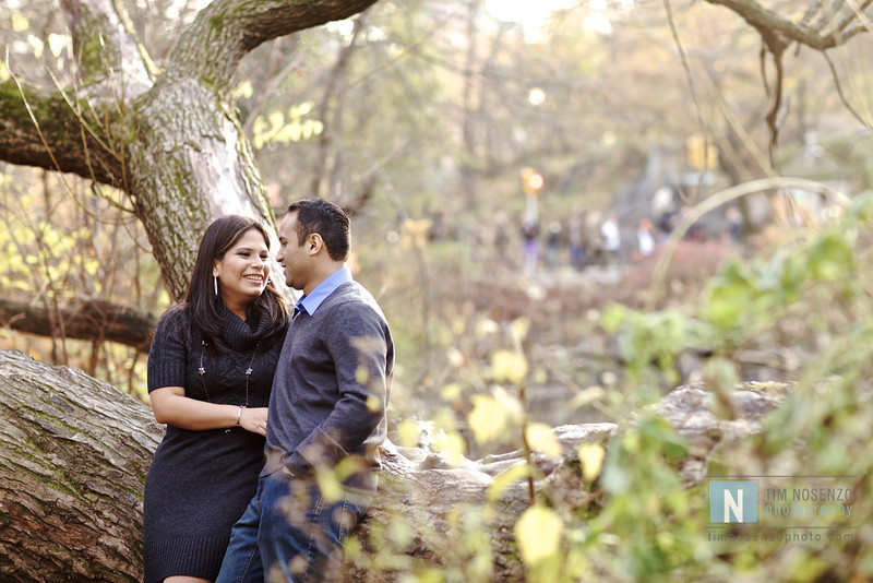 Judy + Bruce's Engagement :: Central Park :: New York, NY