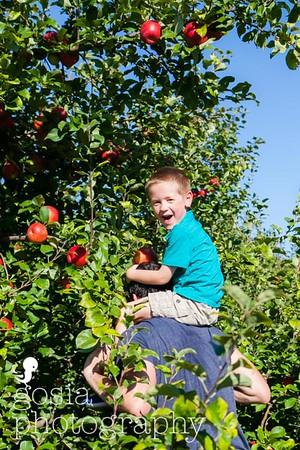 2016 09 18 All Seasons Apple Orchard-0715