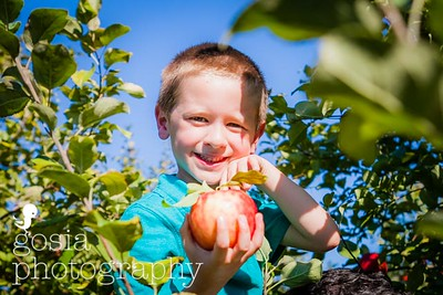 2016 09 18 All Seasons Apple Orchard-0694