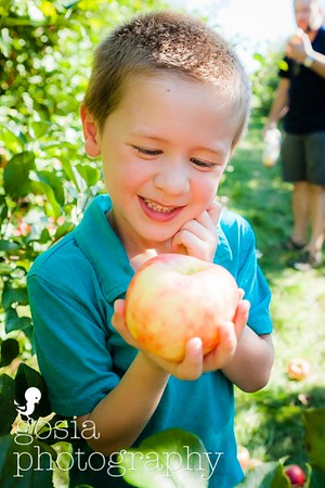 2016 09 18 All Seasons Apple Orchard-0683