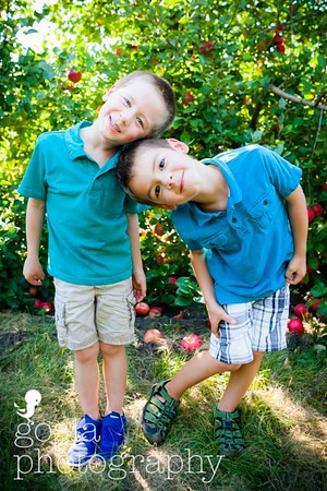 2016 09 18 All Seasons Apple Orchard-0721