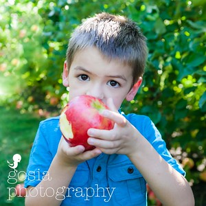 2016 09 18 All Seasons Apple Orchard-0712