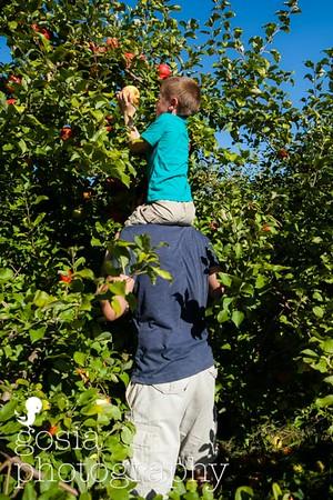 2016 09 18 All Seasons Apple Orchard-0698