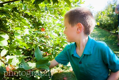 2016 09 18 All Seasons Apple Orchard-0681