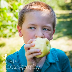 2016 09 18 All Seasons Apple Orchard-0678