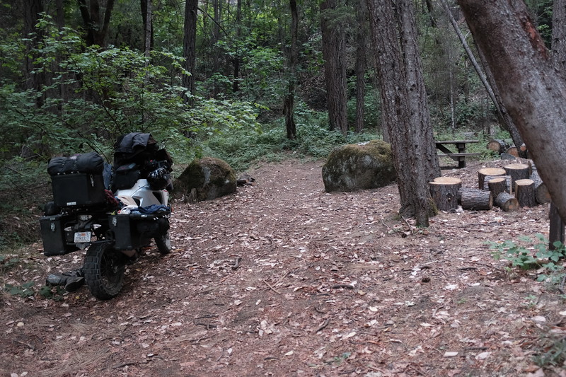 Upper Salmon wayside camp site
