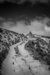 Nevada Desert Old Road
