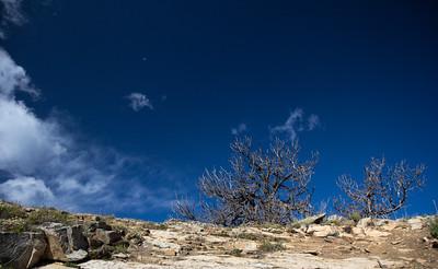 Unbelievably blue skies