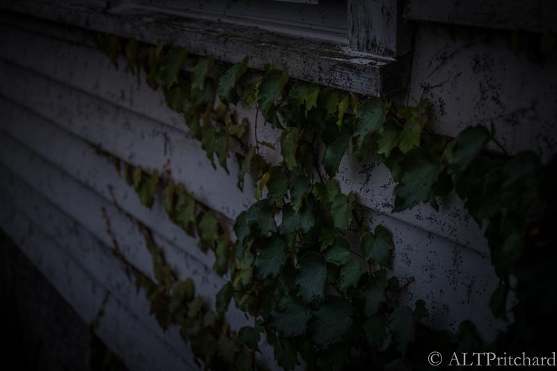 Rockport October 2018 (29)