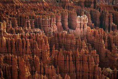 Pale Hoodoos - BryceCanyon, Utah