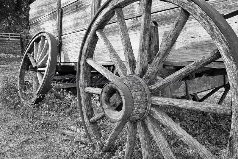 Salado Wagon Wheels
