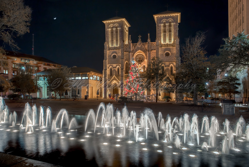 Mission San Fernando Cathedral with Christmas Tree