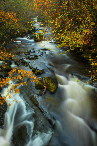 The Birks of Aberfeldy, Perthshire, Scotland.