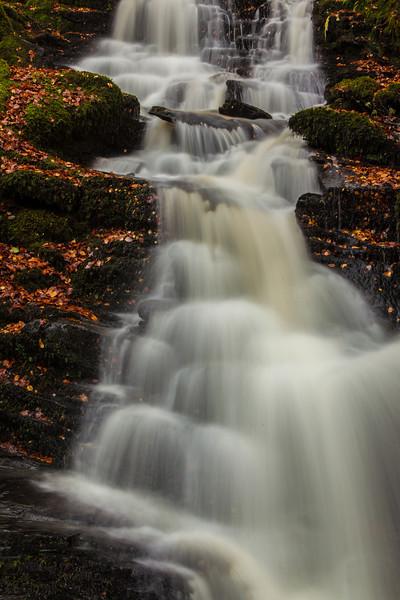 The Birks of Aberfeldy, Perthshire, Scotland.