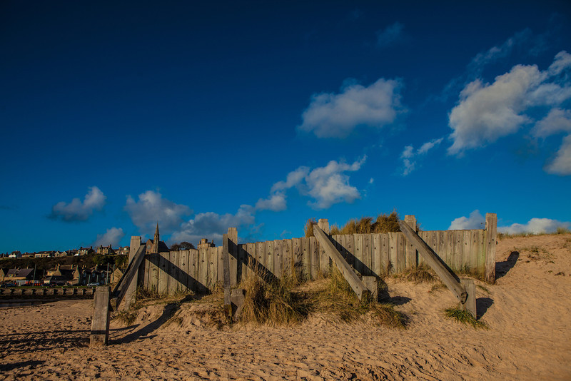 Dune support at Lossiemouth, Moray, Scotland.