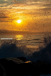 Henlopen Sunrise Splash