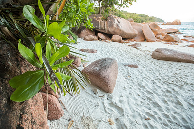 Anse Lazio sunrise moment on Praslin, Seychelles.