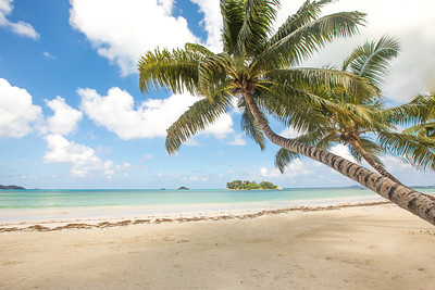 Beach view on the island of Praslin, Seychelles.
