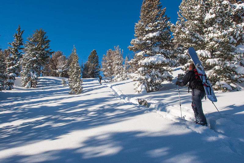 Skinning Mt Rose Backcountry