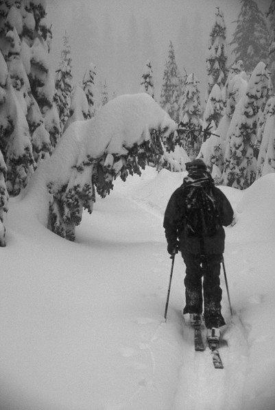 Favorite Backcountry Skiing Photo