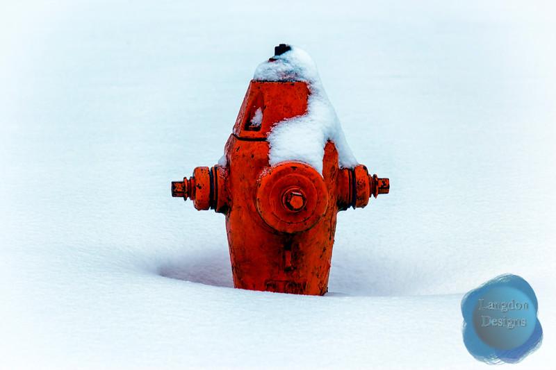 Buring Orange Fire in the Frigid Cold