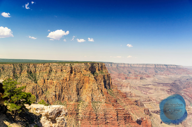 Grand Canyon Vista Shot