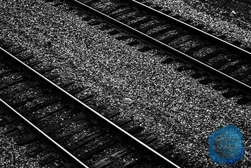 Tracks Black and White
