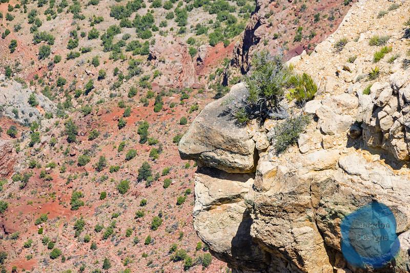 Ridges over Red Rock