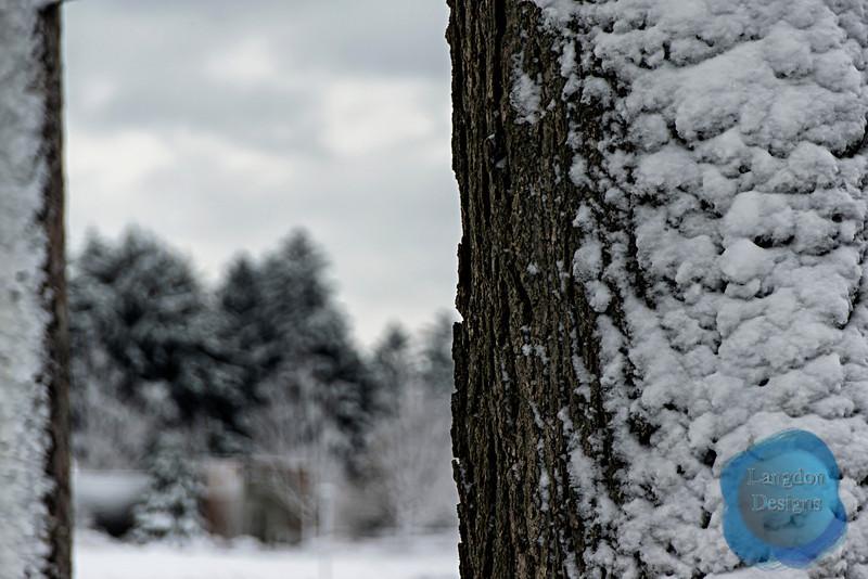 Snow Clung