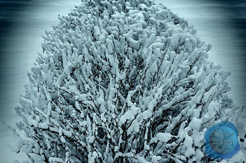 Bushel of Snow