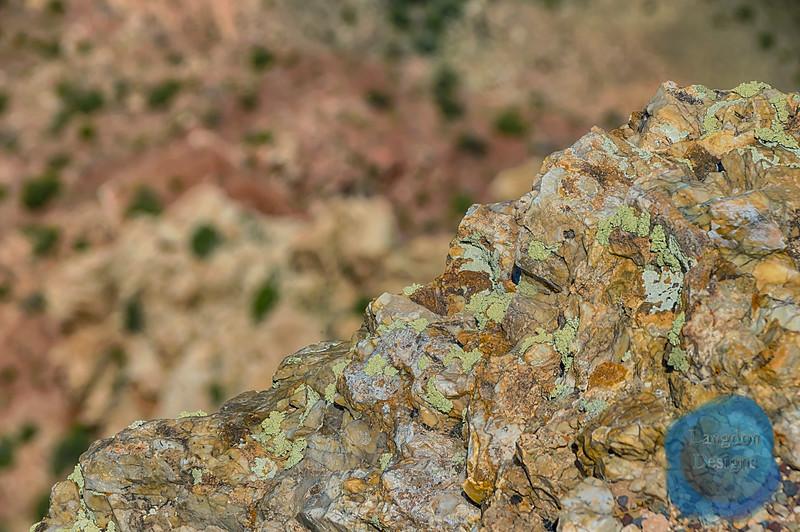 Macro Rock Formation