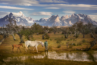 Chile, Patagonia: El vaquero smiled as he walked the horses around to the back of our lodge at Torres del Paine National Park.