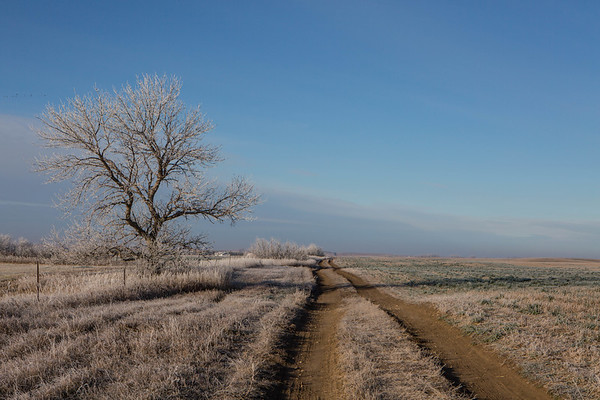 Prairie Road, South Dakota