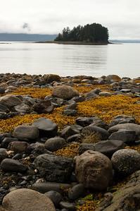 Water Hike #1, Southeast Alaska