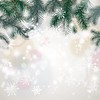 48. Stretch Fabric Backdrop - White Snowflakes with green decor