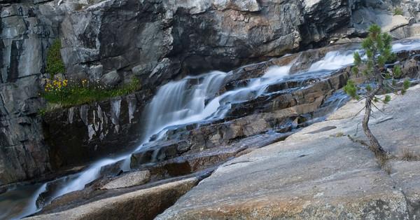 Sierra Cascade