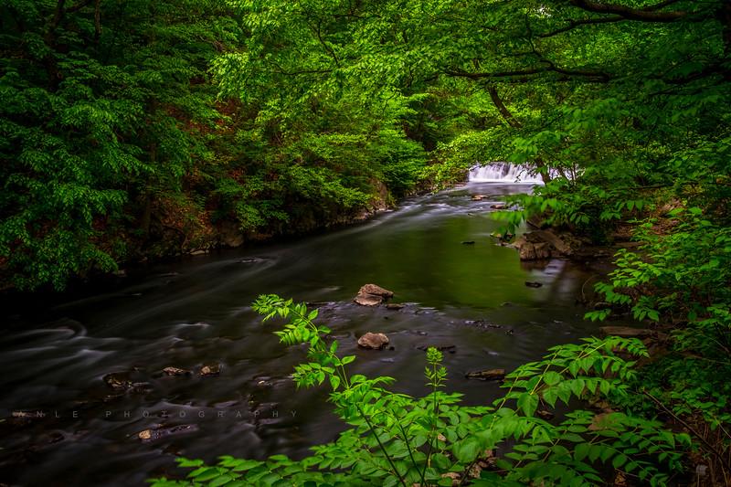 Botanical Garden's Water Fall