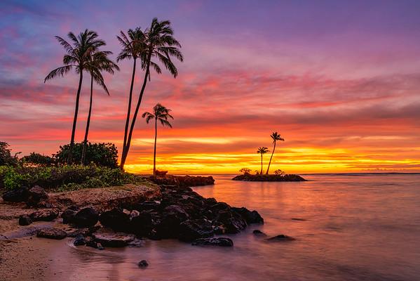 Paradise Glow