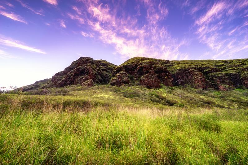 Grassy Fields of Waianae
