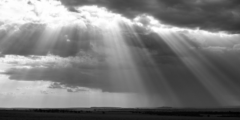 Light over Masai Mara