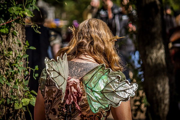 Fairie Wings