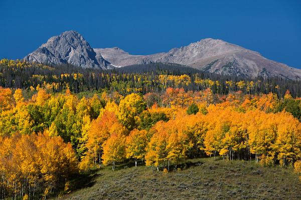 Fall to The Mountainous Horizon